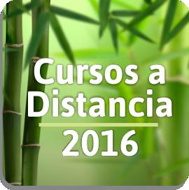 cursos_a_distancia_medicina_china_tai_chi_chuan_qi_gong_auriculoterapia_flores_de_bach_dietetica_moxibustion_ventosas
