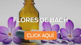 Curso_flores_de_bach