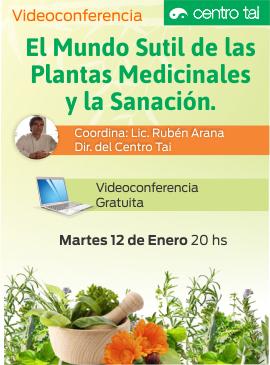 Mundo_sutil_de_las_plantas_medicinales