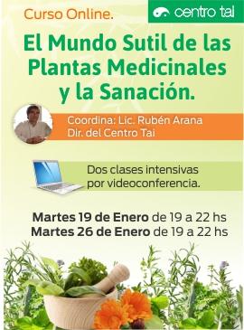 Curso_on_line_plantas_medicinales_y sanacion